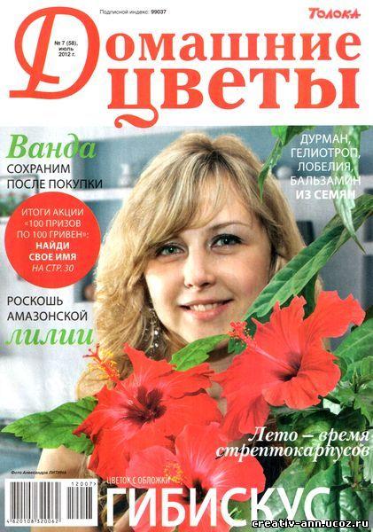 гибискус,драцена,антуриум,цветы