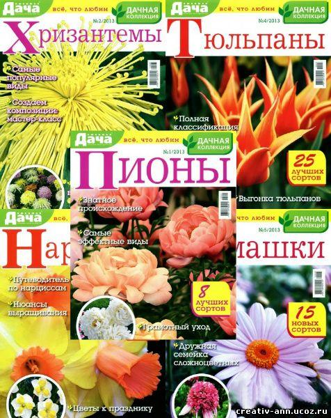 пионы,нарциссы,хризантемы,цветы уход